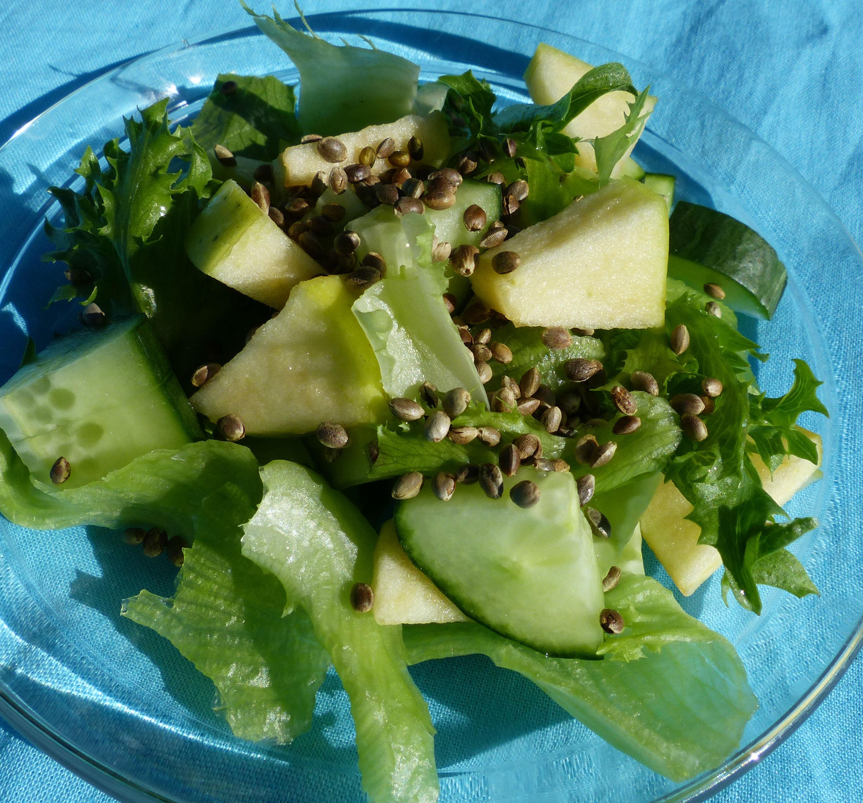 Paahdetut hampunsiemenet maistuvat ja näyttävät salaatissa kivalta - ja ovat kaiken lisäksi terveellisiä. Pähkinäinen maku sopii erityisen hyvin yhteen mm. omenan kanssa.