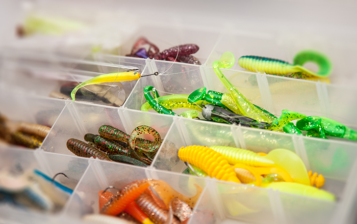 Kalojen herkkutiski. Kuin karkkilaatikko!