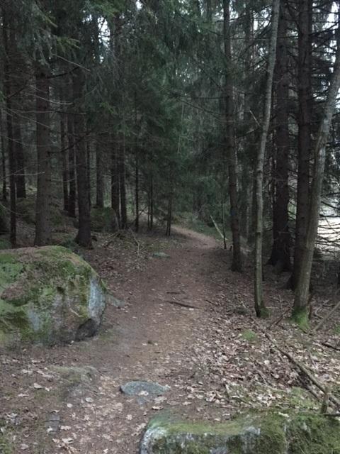 Näetkö kiinnostavan polun, joka voi viedä sinut seikkailuun vai näyttääkö sinusta polku synkältä ja vieraalta?